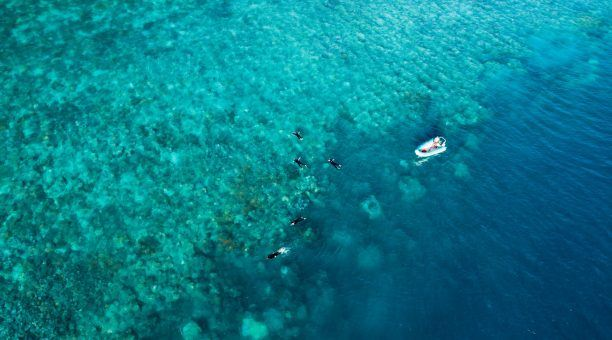 Snorkel in some stunning spots, with the tender getting you as close to the reef as possible!